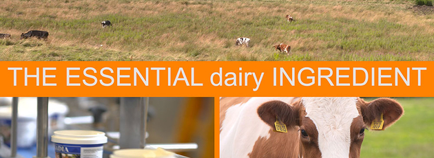 New video about packaging for dairy products